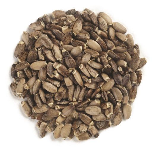 Milk Thistle Seed (organic)