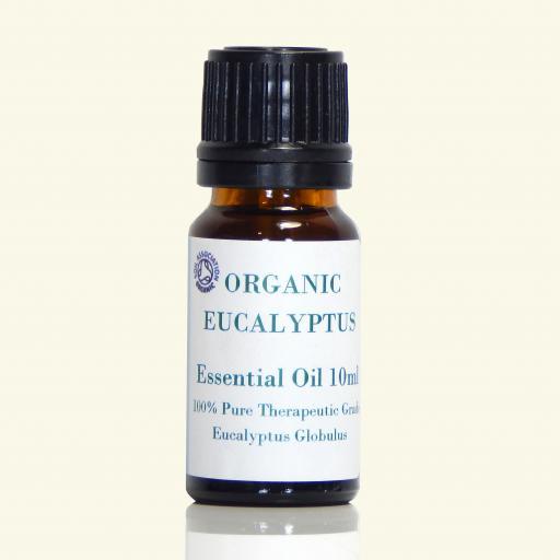 Eucalyptus_Organic_Glob_1fbfc2cd-7a05-4ebf-b233-69646e974b15.png