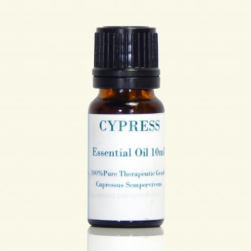 Cypress_f0ab5221-bc88-41d0-9bf9-98c2d83914e4.png